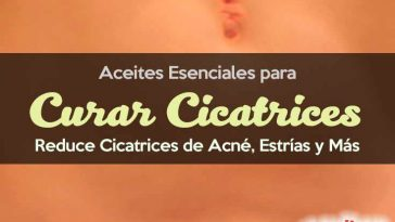 Aceites para cicatrices