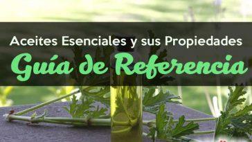 aceites-esenciales-propiedades-guia