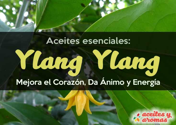 Aceite-esencial-Ylang-Ylang