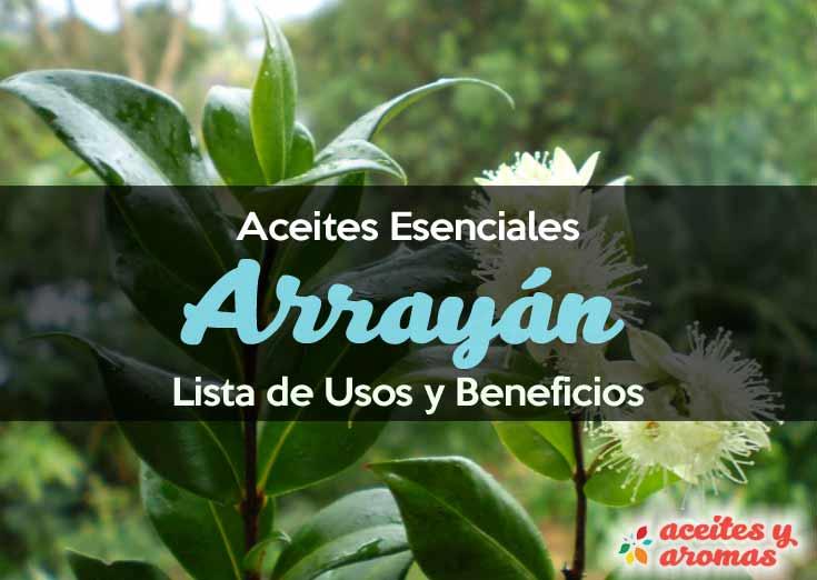 Aceite de arrayán: Usos y beneficios