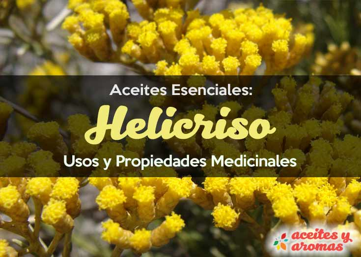 Aceite de helicriso. Usos y beneficios