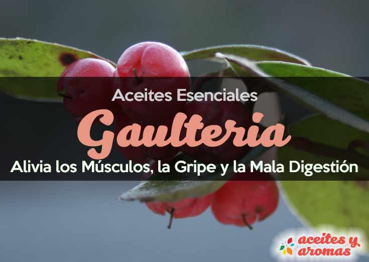 Aceite de Gaulteria: Usos