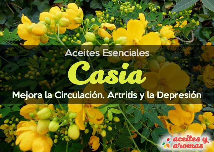Aceite Esencial de Casia Usos y Beneficios